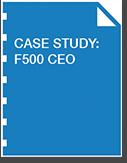 fortune 500 brand management