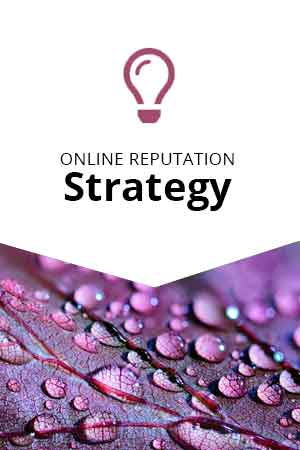 orm-strategy-img